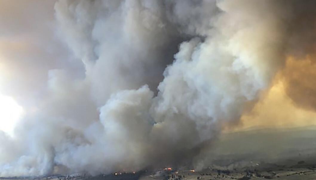 Røyken fra brannene i Australia synlig i Sør-Amerika