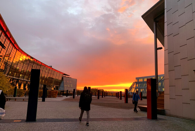 Solnedgang over Telenor-bygget på Fornebu, der Jenny Bonsak jobber. 📸: Privat