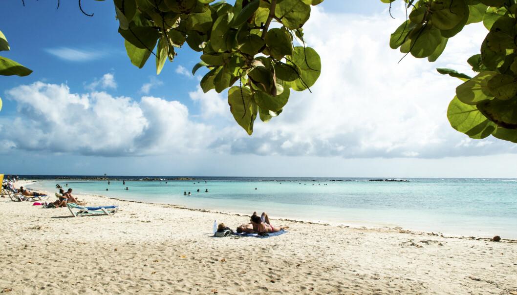 <strong>DRØMMESTRAND:</strong> Palm Beach er en vakker, langstrakt strand med myk korallsand. Ideell for lange turer. FOTO: Jörgen Ulvsgärd/TT