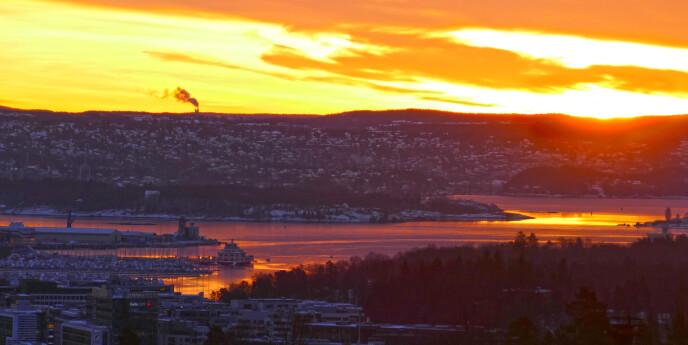 Nordea: Dette skjer med renta framover