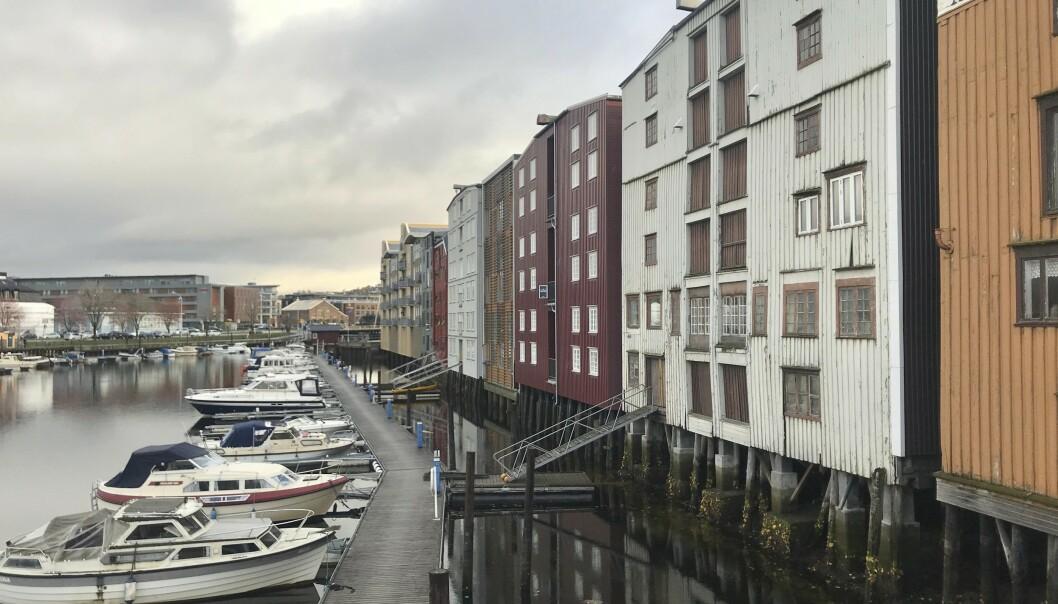 Alltid noe å se på: Her er utsikten fra verandaen til Anne. Snur man hodet mot venstre, ser man ut Trondheimsfjorden. Foto: Daniel Laflor/Aller Media