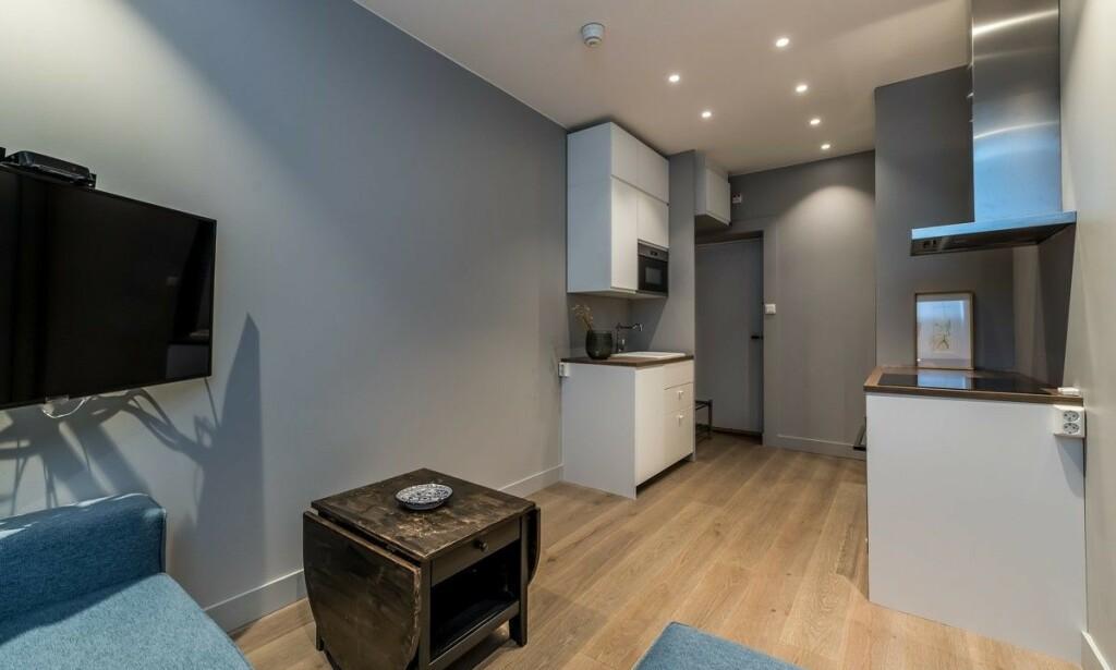 DET DU SER, ER DET DU FÅR: Leiligheten på 14 kvadratmeter er utstyrt med et lite kjøkken og et oppholdsrom. Foto: Invisio Media