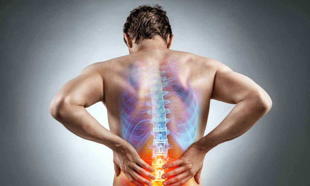 NEDRE RYGGSMERTER: Ukompliserte nedre ryggsmerter kalles også lumbago. Det eksisterer mange feiloppfatninger om tilstanden. Foto: Shutterstock.