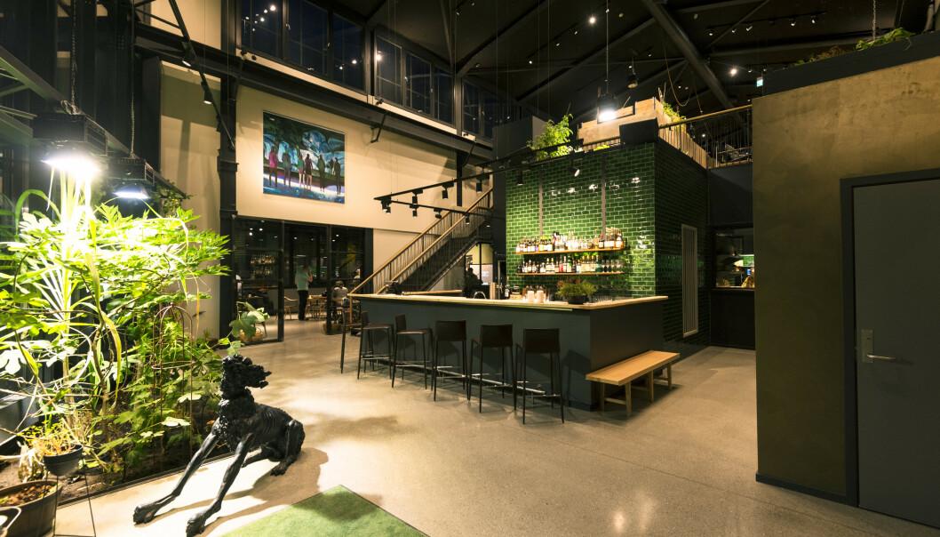 Restauranten Credo i Trondheim fikk i fjor sin første Michelin-stjerne. Mandag deles det ut nye stjerner og det skjer for første gang i Norge. Foto: Ned Alley / NTB scanpix