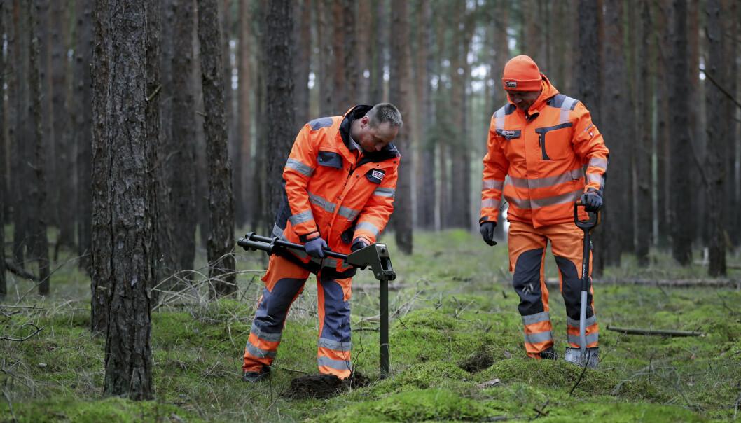 Bomberydding: Området måtte først klareres for etterlatenskaper etter andre verdenskrig. Et antall bomber ble funnet, og fjernet. Foto: NTB Scanpix.