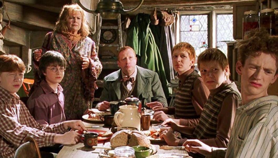 VERDENSKJENT: I film nummer to av den populære trollmannen besøker Harry Potter familien Weasley sitt hjem. Julie Walters er nummer tre fra venstre, og var med i alle de åtte filmene. Foto: Warner Bros/SF Studios