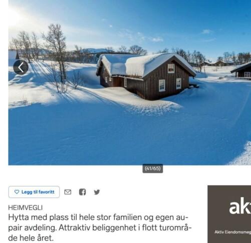 Finn: Slik så annonsen ut. Foto: Skjermdump