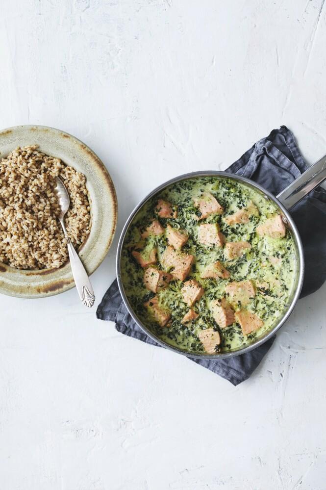 Laks og spinat er alltid en god kombinasjon. Sammen med fløte og perlebygg blir det en solid middag. Tips! Hvis du ikke liker perlespelt, kan retten serveres med nykokt pasta. FOTO: Winnie Methmann