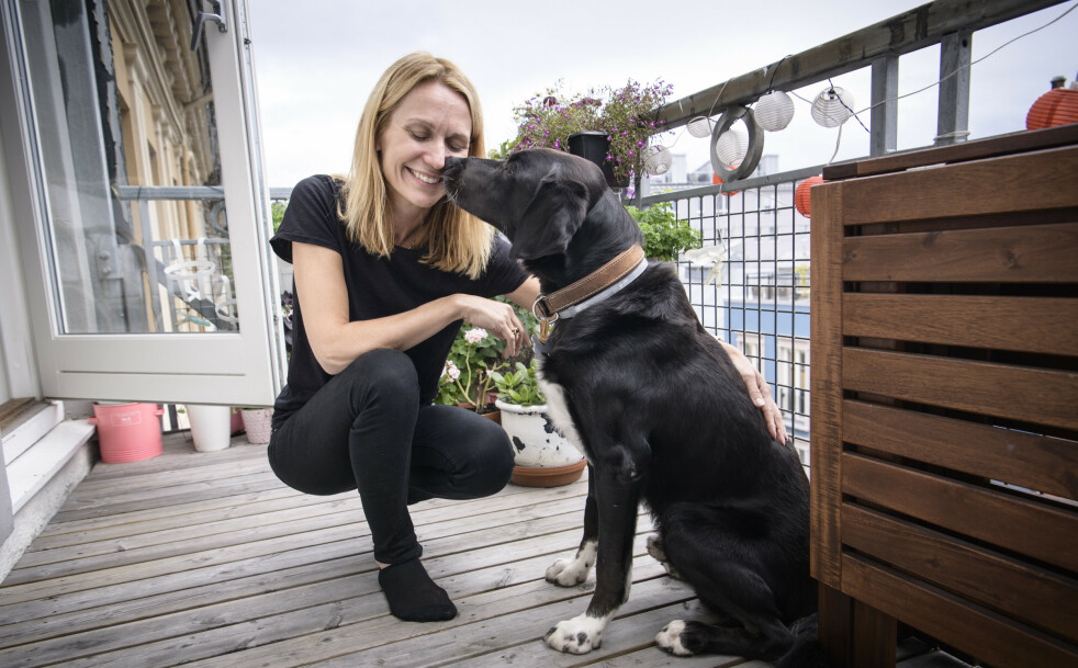 <strong>NÆRT BÅND:</strong> Gjennom 13 år er båndet mellom Sasja Rygg og hunden Munter nært. Eiere må drive med mer eldreomsorg for dyra enn før. Foto: Lars Eivind Bones/Dagbladet