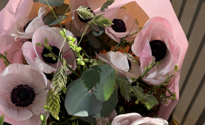 Blomster til meg sjøl fra meg sjøl, til støtte for en kjær blomsterbutikk som jeg håper vil overleve det økonomiske tapet coronakrisa påfører dem.