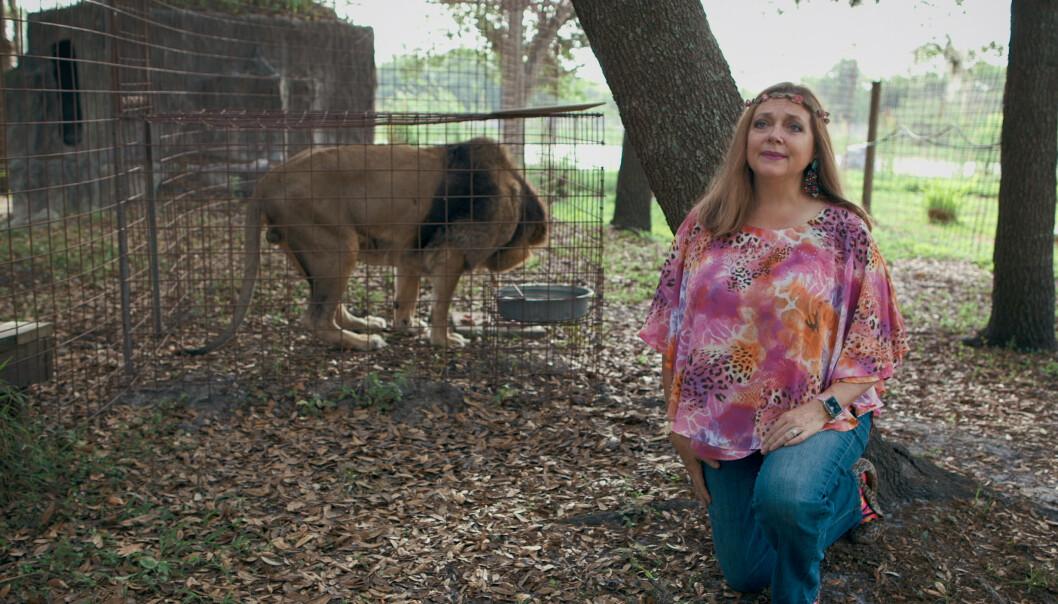 REDDENDE ENGEL?: Carole Baskin i parken sin «Big Cat Rescue» i Florida, der hun tar imot store kattedyr. Ikke alle i serien er enige i at gjerningen hennes er bare gode. FOTO: Netflix