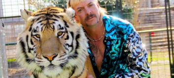«Hun foret mannen sin til tigrene»