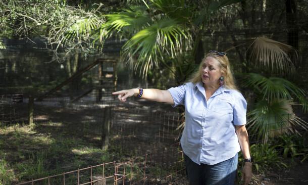 CAROLE BASKIN: «Tiger King»-profil Carole Baskin avbildet i juli 2017. Foto: Loren Elliott/ Tampa Bay Times via AP/ NTB scanpix