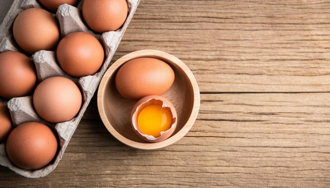 EGG: Egg inneholder mange viktig næringsstoffer. FOTO: NTB Scanpix