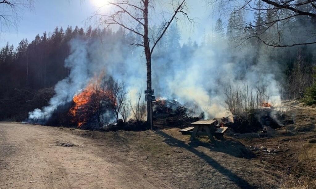 En engangsgrill startet skogbrann i Sørkedalen i Oslo onsdag. Bymiljøetaten advarer og sier dette kunn endt med en stor skogbrann. Foto: Bymiljøetaten i Oslo kommune