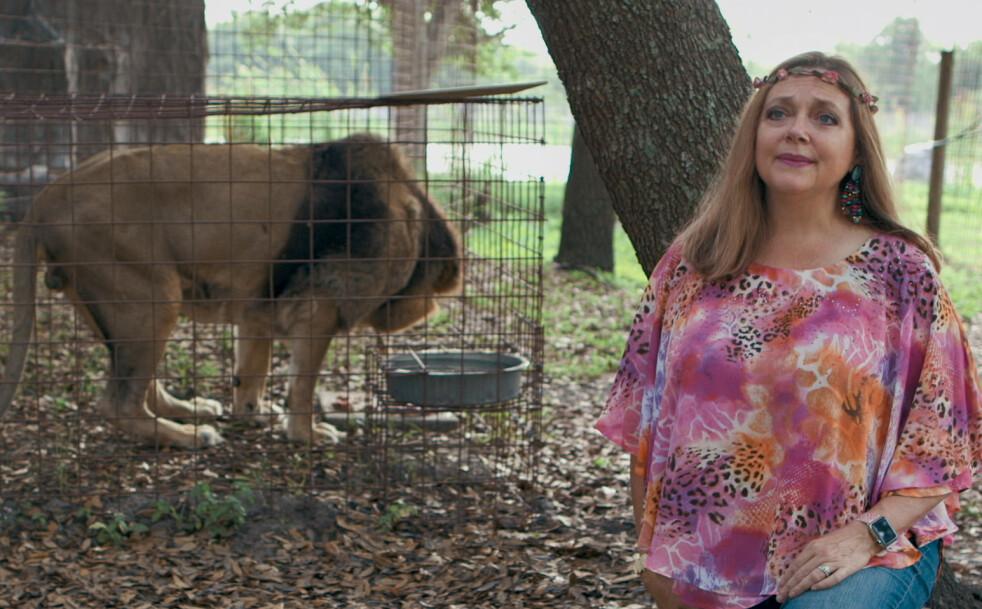TIGER KING: Den kontroversielle dyreparkeieren Carole Baskin ble nylig lurt inn i sitt første video-intervju siden «Tiger King», av to britiske YouTubere. FOTO: Netflix