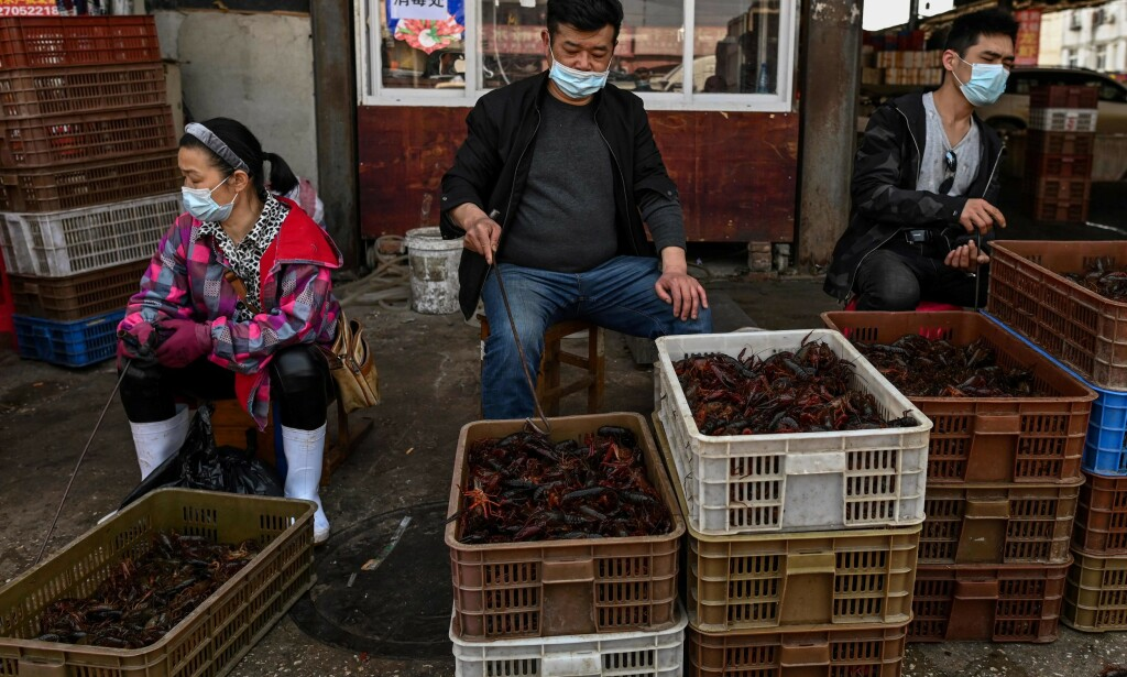 Rekeselgere ved Baishazhou-markedet i Wuhan. (Foto: Hector Retmal / AFP / NTB Scanpix)