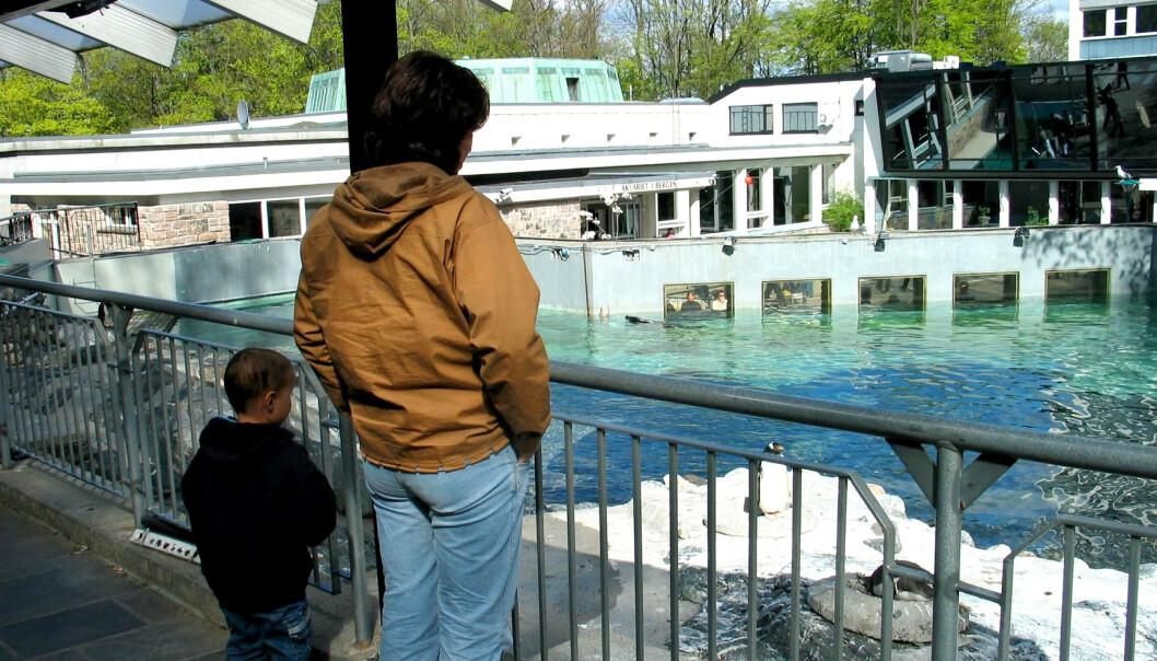 ÅPNER 24. APRIL: Akvariet i Bergen er ett av mange tilbud som åpner dørene igjen denne uka. Foto: Bjørn Eirik Loftås