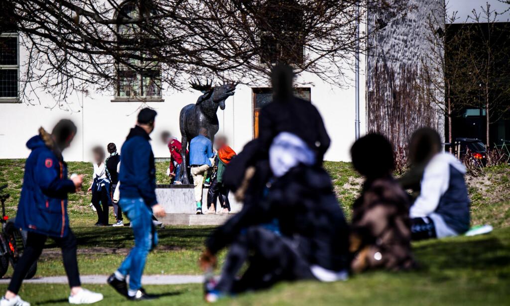 ELGSLETTA: Det paradoksale er at politiet selv bidrar til at de avhengige har forflyttet seg til Vaterland, skriver innsenderen. Elgsletta Park ved Akerselva, skulle være et tilbud til barn og ungdom i området, men er blitt et møtested for narkomane. Foto: Lars Eivind Bones / Dagbladet