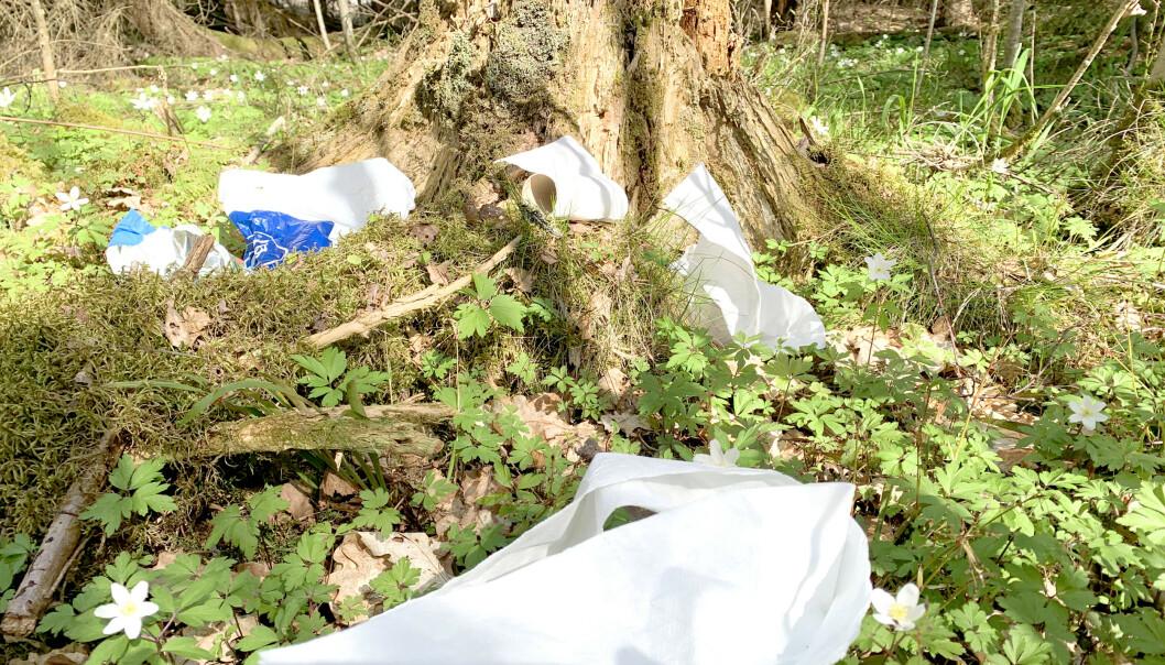 <strong>FORSØPLING AV SKOG OG MARK:</strong> Friluftsorganisasjonene frykter at flere folk, og kanskje spesielt uerfarne turfolk, kan føre til en økning i forsøpling av skog og mark. Hva gjør du for eksempel med dopapir når du har vært på do i skogen? Svaret på hva du BØR gjøre, kan du lese i artikkelen. Foto: Kristin Sørdal