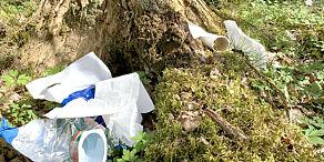 image: - Frykter tidenes søppelsommer
