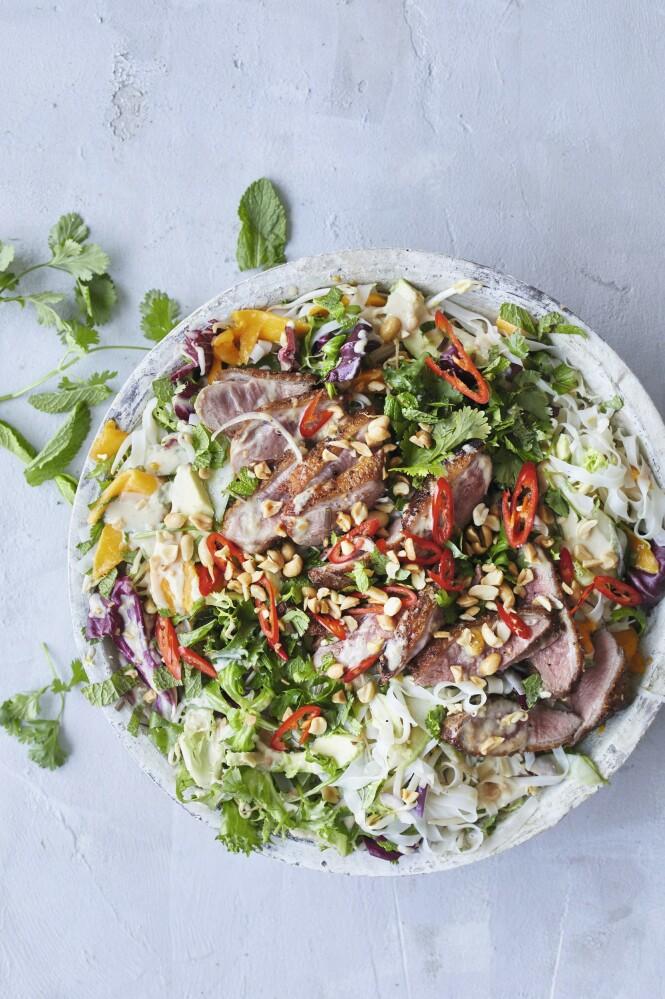 Salat er en god middag når den inneholder både nudler og rosastekt andebryst. Tips! I stedet for and kan du fint bruke kyllingfilet i denne salaten. FOTO: Winnie Methmann