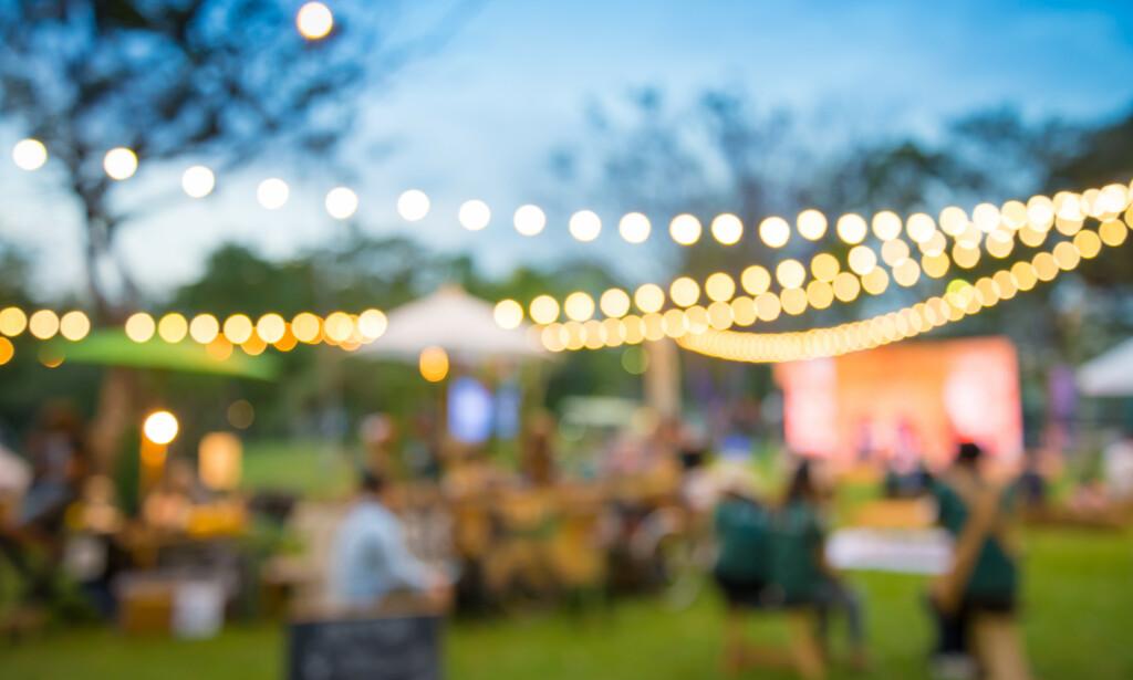 DRITTPAKKE: Myndighetene i Lund i Sverige vil nå bruke hønsemøkk mot corona. I Lund frykter man at festing i parken vil føre til økt smittefare. Løsningen er å spre hønsemøkk utover gresset. Illustrasjonsfoto: Shutterstock