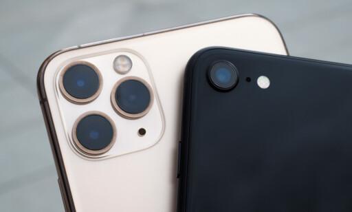 DEN STORE FORSKJELLEN: De er ganske åpenbar hva som skiller iPhone SE fra de dyreste iPhone 11 Pro-modellene. Det er tre kameraer bak mot ett. Prestasjonsmessig betyr ikke det nødvendigvis alt. Foto: Kirsti Østvang