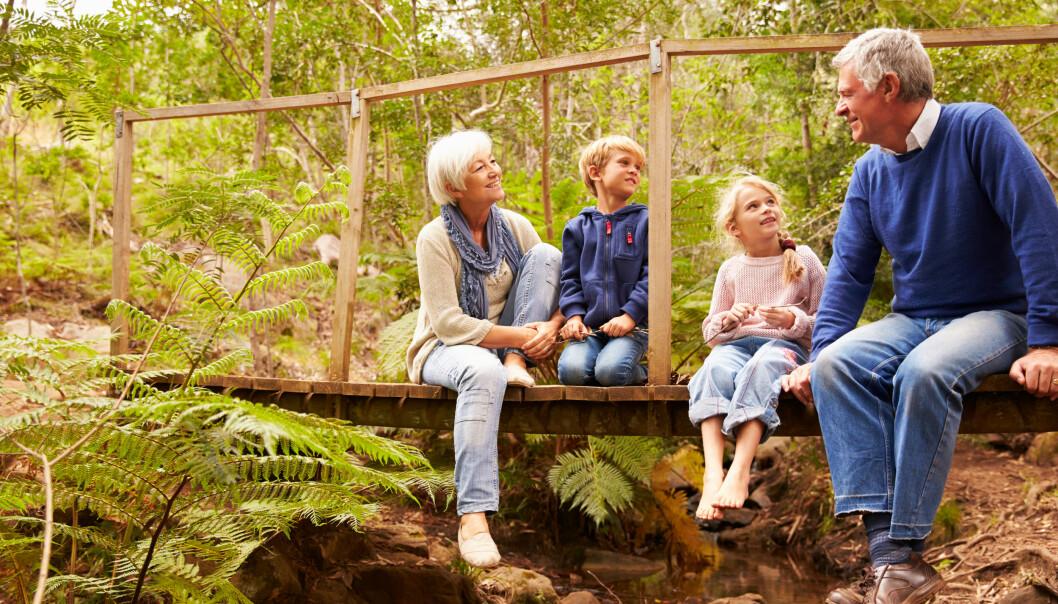 Selv besteforeldre i risikogrupper kan igjen møte barnebarna sine, så lenge alle følger gjeldene smittevernråd. Og møtene må gjerne foregå utendørs, og helst ikke over så veldig lang tid. Foto: Shutterstock/NTB Scanpix