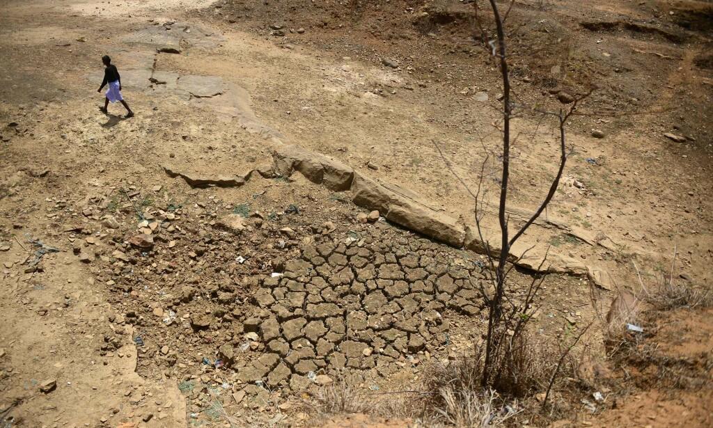 TØRKE: En bonde går forbi en uttørket dam i India. Foto: NTB Scanpix/Reuters