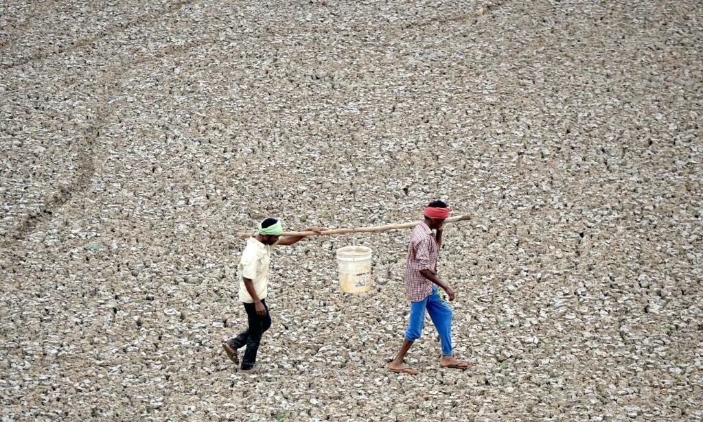 TØRT: Indiske arbeidere bærer de siste dråpene med vann fra en liten dam i Puzhal utenfor Chennai. Foto: ARUN SANKAR / AFP