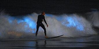 image: Selvlysende bølger forbløffer surfere