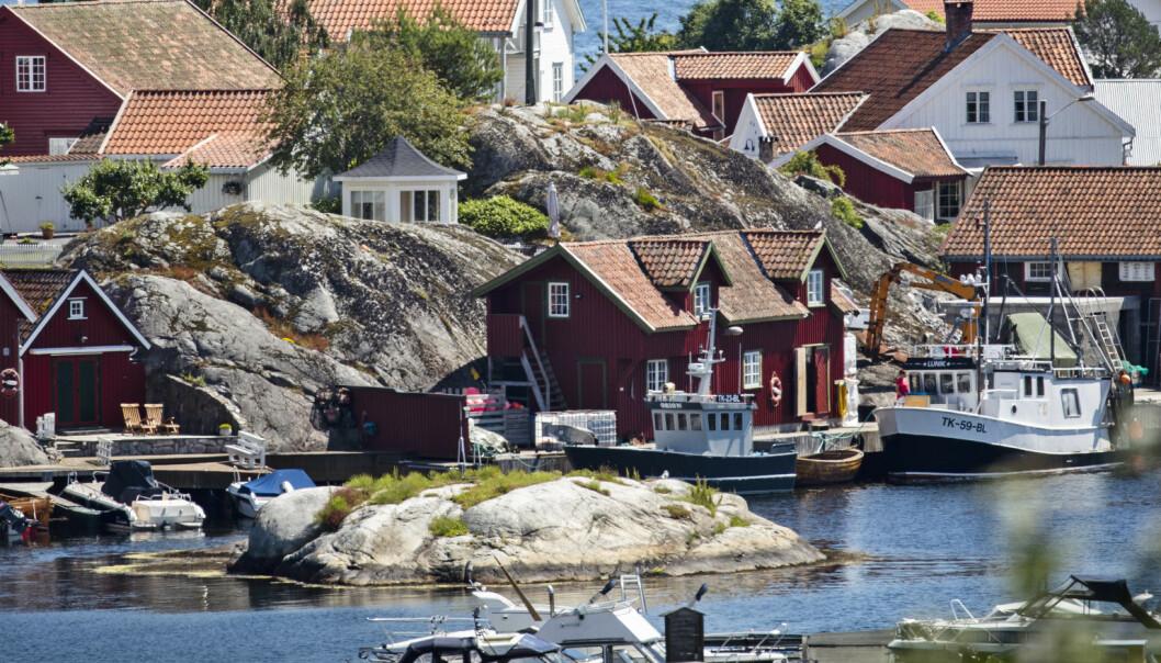 Frykter brutal smell for Norge