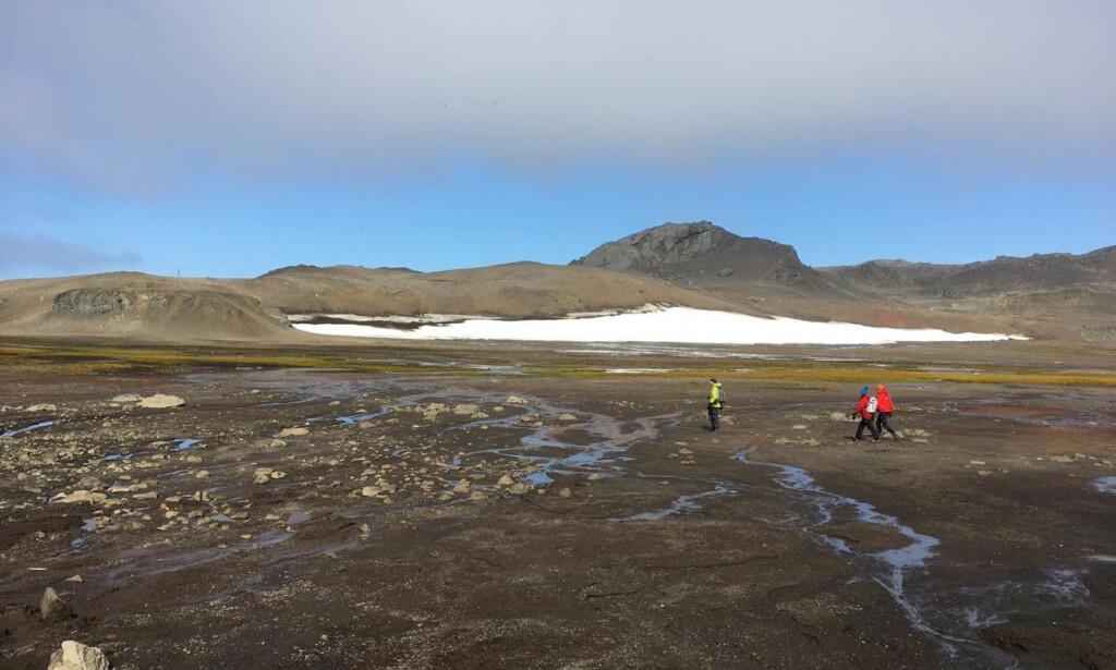 ØDE: Forskere på Isla Rey Jorge-området i Antarktis 13. april i år. Foto: Courtesy of Chilean Antarctic Institute-INACH / REUTERS / NTB scanpix