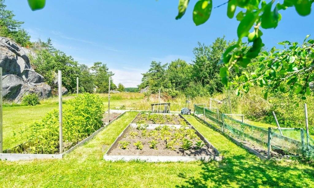 - SELVFORSYNT: Ifølge megler er eiendommen betydelig oppgradert - blant annet med egen grønnsakshage. Foto: Stein Olsen