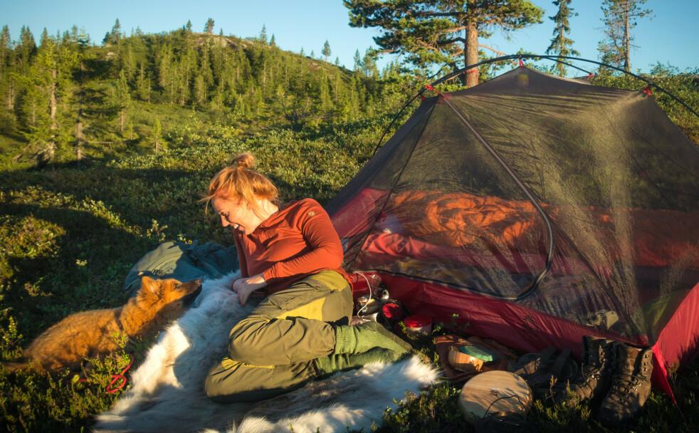 SOVE UTE: Friluftsentusiast Bodil Dorothea Gilje elsker å sove under åpen himmel sammen med hunden Ronja - og hun foretrekker skogen, der det er godt med trær. FOTO: Privat