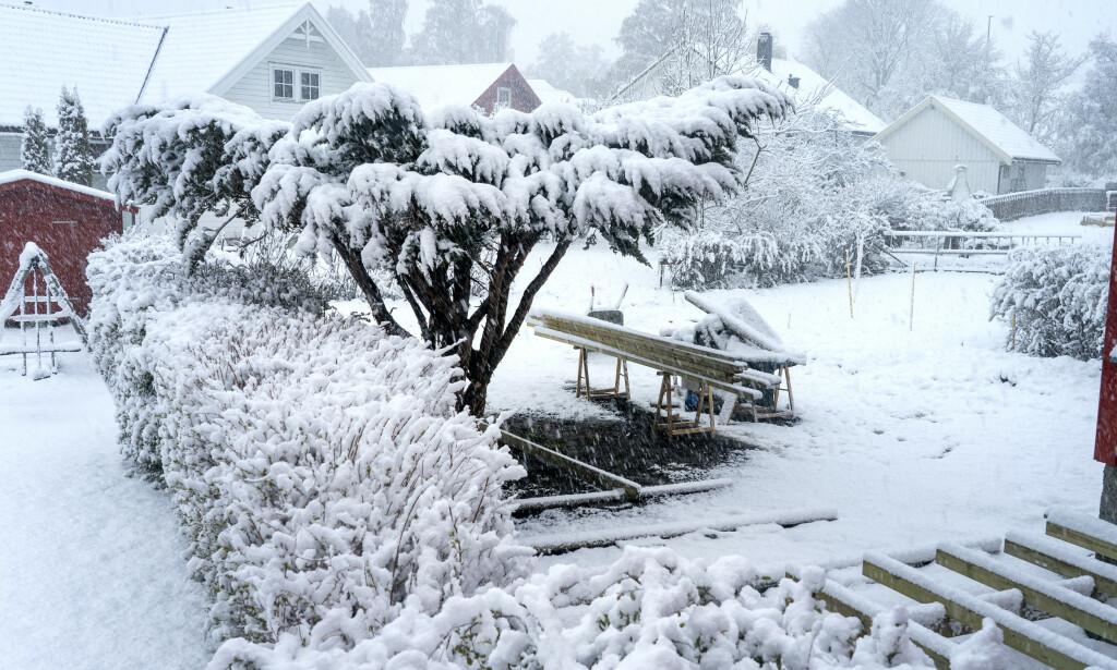 Snøen kom til Trøndelag også onsdag 13. mai. Foto: Gorm Kallestad / NTB scanpix