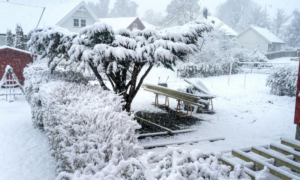 image: Vinteren er ikke over – kulderekorder flere steder