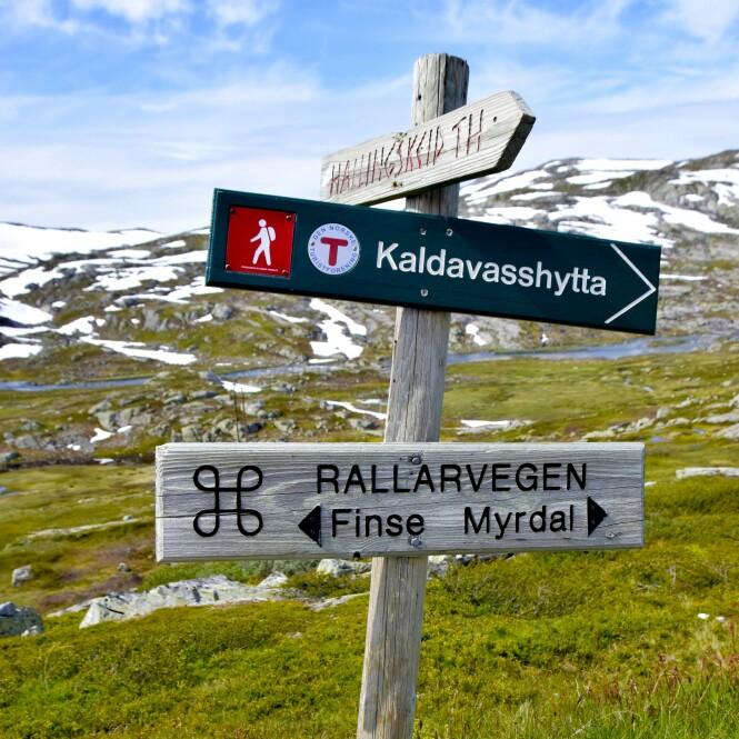 FRA ØST TIL VEST: Den gamle anleggsveien går langs Bergensbanen og Flåmsbana. FOTO: Mari Beraksten