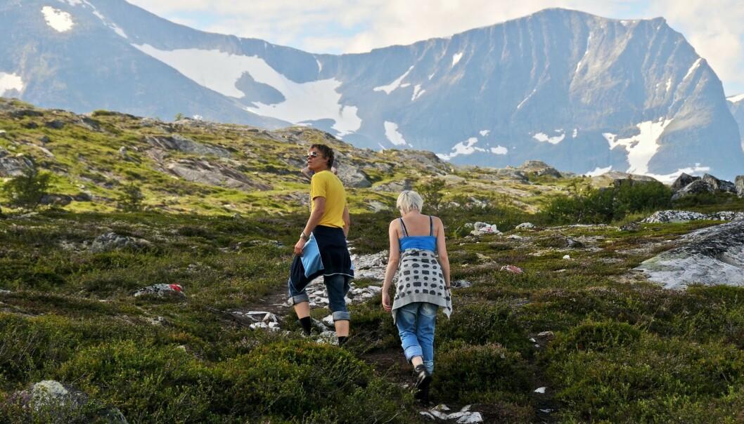 <strong>TURTIPS:</strong> Trenger du tips til hvor du kan gå tur i norsk natur i sommer, finnes det flere apper som kan hjelpe deg. Foto: Privat