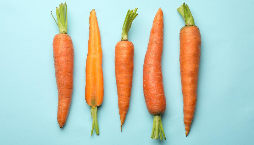 GULROTHEMMELIGHET: Betakaroten - som finnes i blant annet gulrøtter - er et stoff som blir omgjort til vitamin A i kroppen. Det er hemmeligheten bak brunfargen.