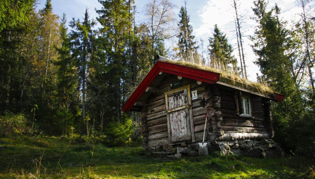 <strong>ROMANTISK:</strong> Hytta Drømmen på Krokskogen er både pittoresk og rustikk. Og ikke så lite romantisk. FOTO: DNT/Sindre Thoresen Lønnes