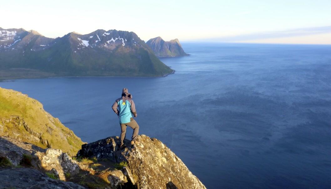 HIMMEL OG HAV: Fjelltur til Sukkertoppen på Senja i lyset av midnattssola. Norges nest største øy er et sommerlig paradis for fotturer – døgnet rundt. Foto: Runar Larsen