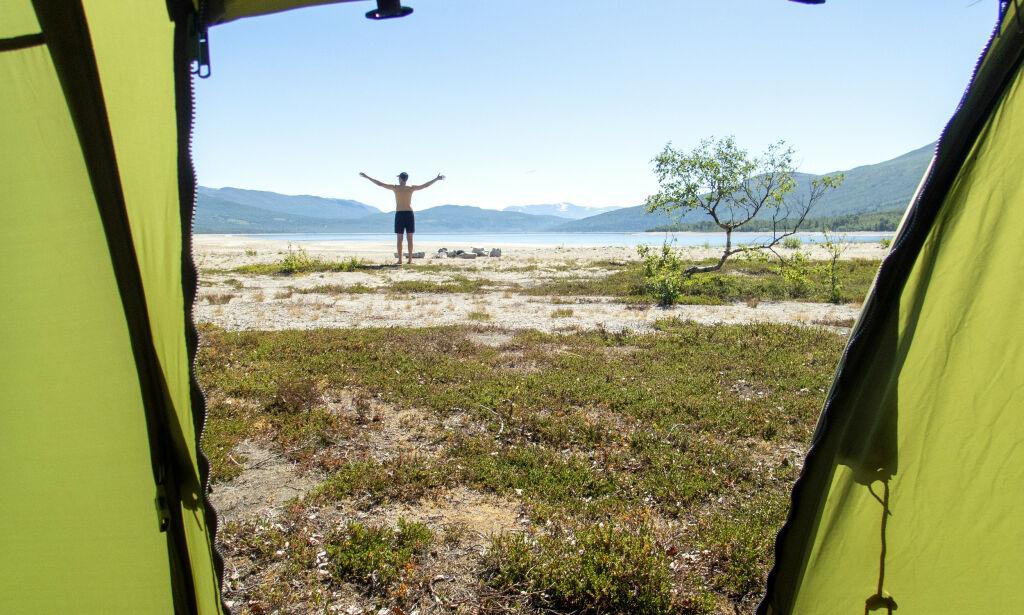 image: Gifteksperter advarer ferske teltturister: - Man blir først trøtt og uopplagt
