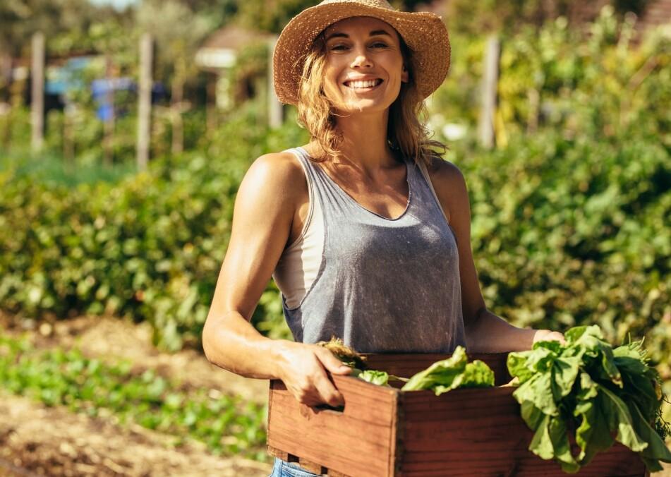 <strong>KJØKKENHAGE:</strong> Å dyrke sine egne grønnsaker er både bra for planeten og for lommeboka, men unngå disse fallgruvene. FOTO: NTB Scanpix