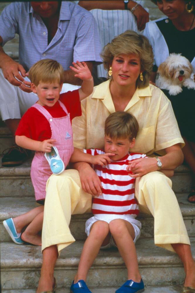 MISTET MOREN SOM 15-ÅRING: Prinsesse Diana med sønnene, prins William og prins Harry, i 1987. Foto: NTB scanpix