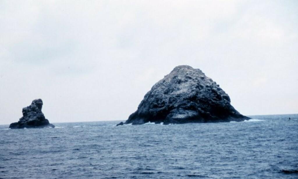 SKJULER GIGANTISK VULKAN: Forskere har konkludert med at Gardner Pinnacles på Hawaii er verdens største vulkan. Foto: Wikicommons