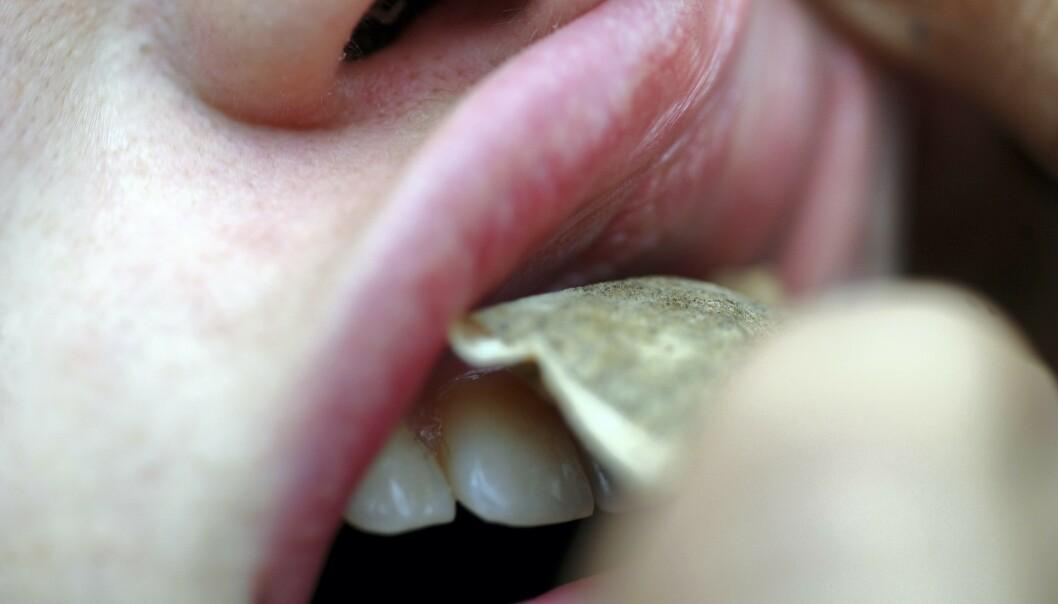HINDER FOR CORONA? Svenske forskere vil se på snuserne får et mildere forløp av coronasykdom, og om det kan ha noe med nikotinet i snus å gjøre. Foto: Terje Pedersen / ANB / ALL OVER PRESS / NTB scanpix