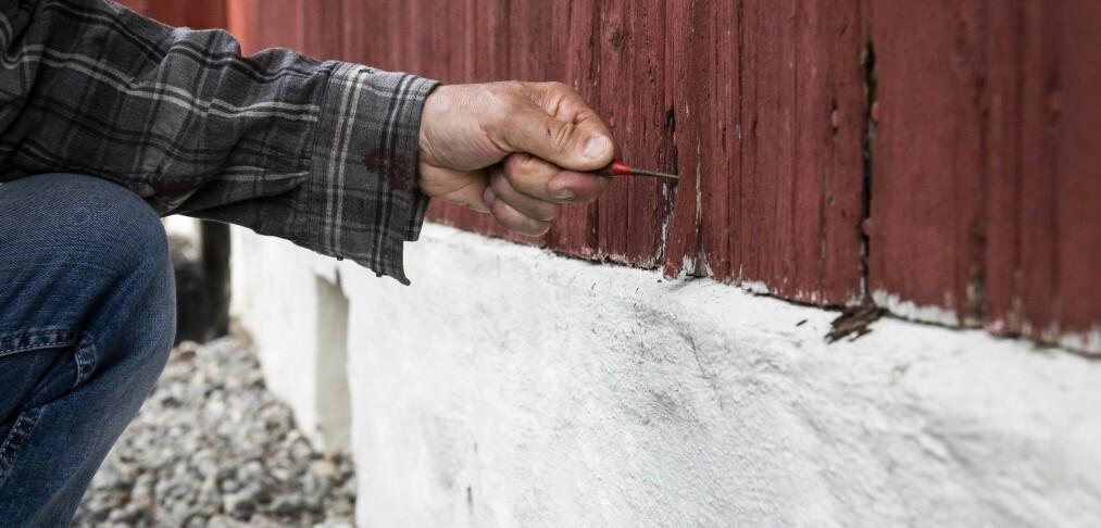 «Farevarsel»: Høstens hytte-herjinger