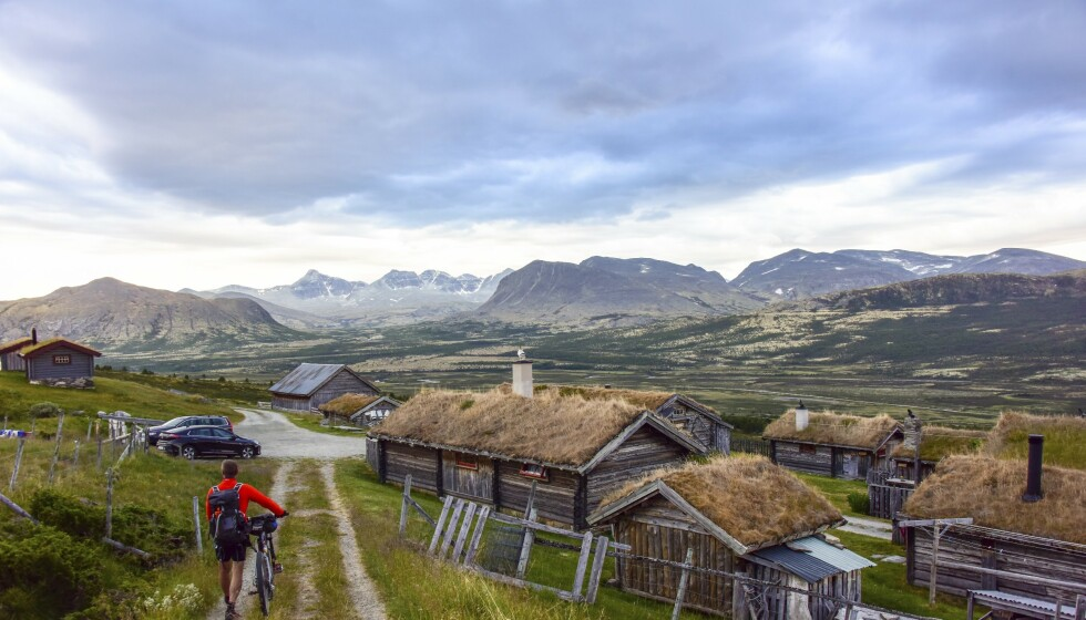 NASJONALROMANTISK: Utsikten over Grimsdalen, de gamle setrene og Rondetoppene i det fjerne er som et maleri av Tidemand og Gude. Foto: Ronny Frimann